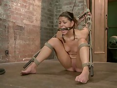 We start with Mia Gold standing her in a simple box tie. Claire challenges her..