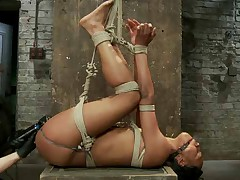 Nikki Darling is a tiny little dancer who went from classic ballet to pole..