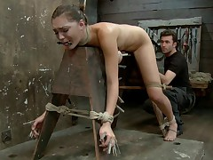 Thats right, welcome Hollly Michaels to HogTied. This week James thoroughly..