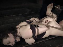Dixon Mason is the perfect model for an update filled with our uniquely strict..