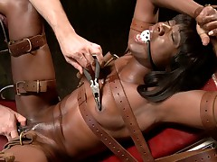 Gorgeous runway black skin model Ana Foxxx is splayed open and sexually..
