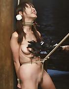 Japanese Rope Slut