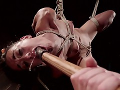 Lyla Storm is a bendy little bitch that can take the pain. she is put in..