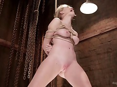 All natural beauty Ashley Lane is an up and coming starlet that loves bondage..