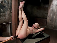 Gorgeous Christie Stevens brings her fantastic body to HogTied for us to tie..