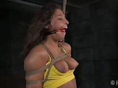 Girls like Abella Danger come to Jack Hammer and ask to be tied up. She..