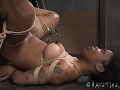 Sasha Banks loves rope, but even she doesn't know quite how much. She's done..