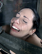 Samantha Begging To Cum, pic #4