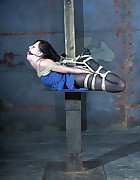 Elise Tied Up High, pic #5