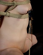 Katharine Cane is Caned & Trained, pic #13