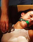 Vixen bound and ballgagged, pic #7