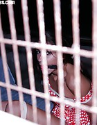 Ann hogtied and ballgagged in the gardenhouse, pic #4