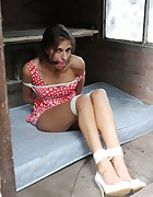 Ann hogtied and ballgagged in the gardenhouse, pic #9