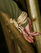 Dutch girl tied to tree, pic #11