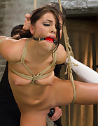 Young Girl Destroyed by Bondage and Orgasms, pic #5
