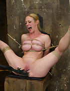 Rope Slut Gets Bound and Defiled, pic #12