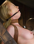 Tracey Sweet in bondage, pic #10