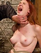Redhead Newbie Taken, pic #14