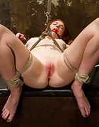 Redhead Newbie Taken, pic #10