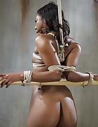 Black Whore Moan, pic #7