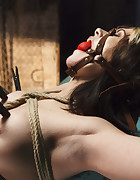 Taken, Tied and Tortured, pic #5