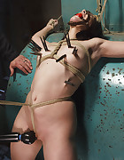 Taken, Tied and Tortured, pic #6