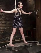 Hot Brunette in Orgasm Predicaments, pic #3