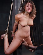 Tie Me Up, pic #3