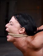 Fit To Be Tied, pic #3