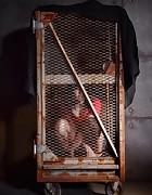 Caged Bird, pic #1